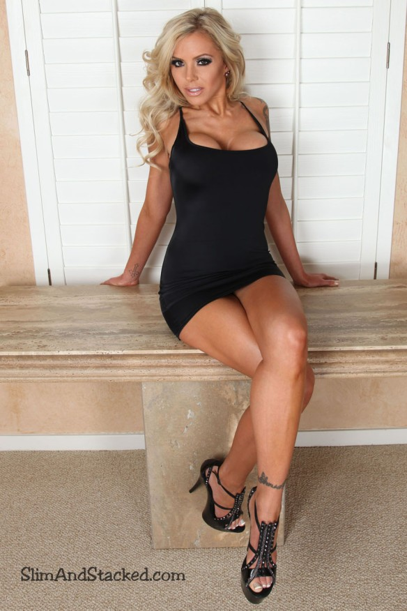 "Nina was born to wear the ""little black dress"".  Hot as she is, things get even hotter as Nina takes it off!  Own the entire set in ultra high, 3000 pixel resolution by contacting dezertimagez@gmail.com for pricing."